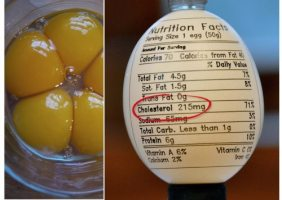 Scam-About-Cholesterol-in-Eggs-and-Reasons-to-Eat-Eggs-Daily